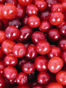 eat cranberries if you are losing short term memory